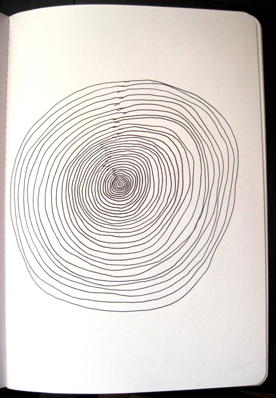 Concentric Circles - Take 2