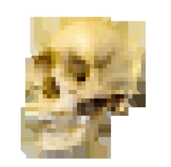 Skull Pixel